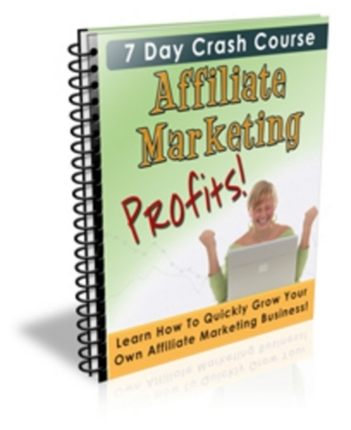 Product picture Affiliate Marketing Profits 7 Day eCourse With Private Label